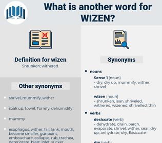 wizen, synonym wizen, another word for wizen, words like wizen, thesaurus wizen