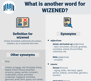 wizened, synonym wizened, another word for wizened, words like wizened, thesaurus wizened