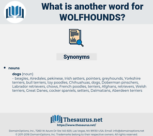 wolfhounds, synonym wolfhounds, another word for wolfhounds, words like wolfhounds, thesaurus wolfhounds