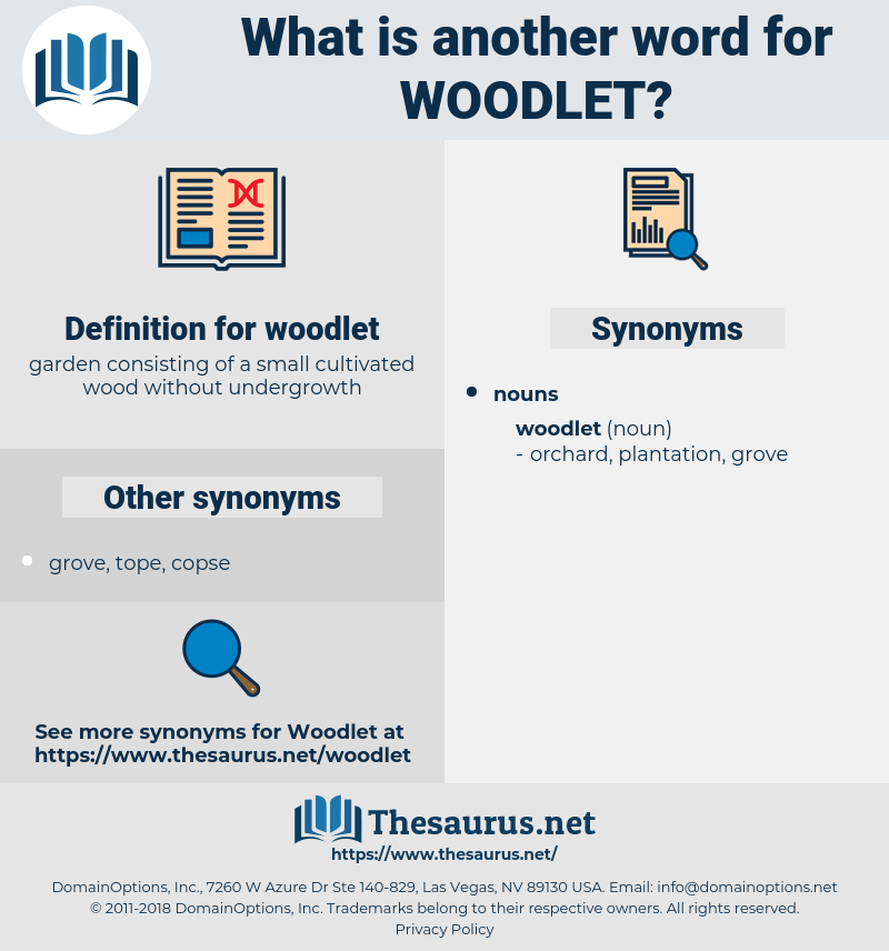 woodlet, synonym woodlet, another word for woodlet, words like woodlet, thesaurus woodlet