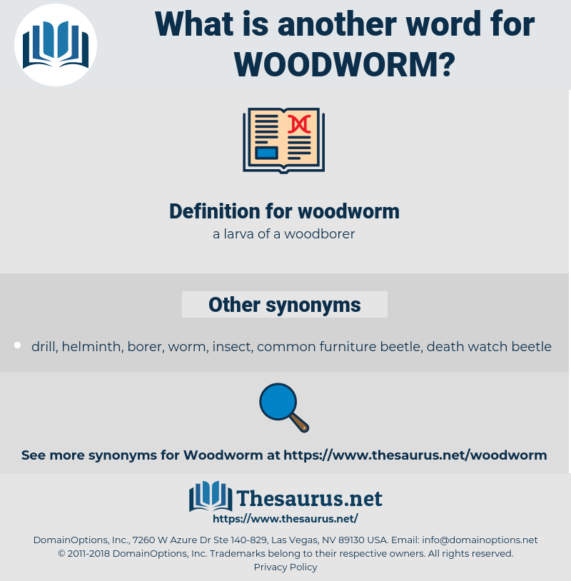 woodworm, synonym woodworm, another word for woodworm, words like woodworm, thesaurus woodworm