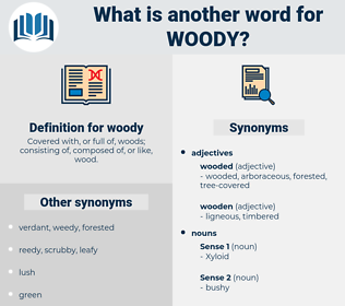 woody, synonym woody, another word for woody, words like woody, thesaurus woody