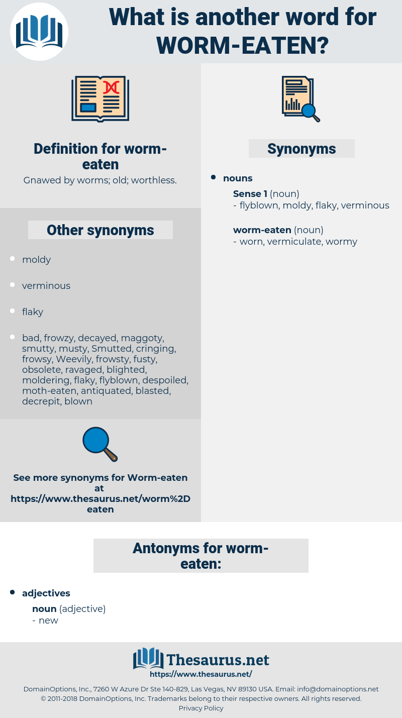 worm-eaten, synonym worm-eaten, another word for worm-eaten, words like worm-eaten, thesaurus worm-eaten