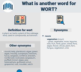 wort, synonym wort, another word for wort, words like wort, thesaurus wort