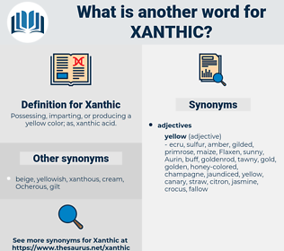 Xanthic, synonym Xanthic, another word for Xanthic, words like Xanthic, thesaurus Xanthic