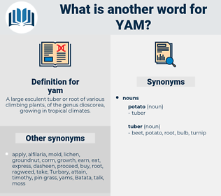 yam, synonym yam, another word for yam, words like yam, thesaurus yam