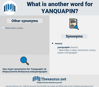 yanquapin, synonym yanquapin, another word for yanquapin, words like yanquapin, thesaurus yanquapin
