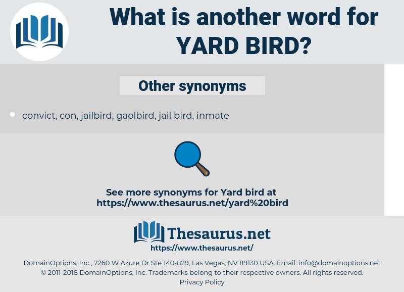 yard bird, synonym yard bird, another word for yard bird, words like yard bird, thesaurus yard bird