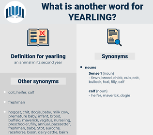 yearling, synonym yearling, another word for yearling, words like yearling, thesaurus yearling