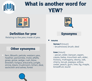 yew, synonym yew, another word for yew, words like yew, thesaurus yew