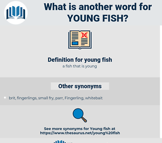 young fish, synonym young fish, another word for young fish, words like young fish, thesaurus young fish