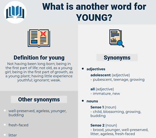 young, synonym young, another word for young, words like young, thesaurus young