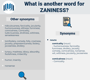 zaniness, synonym zaniness, another word for zaniness, words like zaniness, thesaurus zaniness