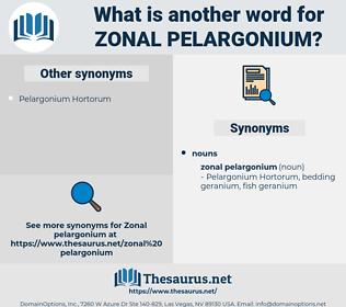 zonal pelargonium, synonym zonal pelargonium, another word for zonal pelargonium, words like zonal pelargonium, thesaurus zonal pelargonium