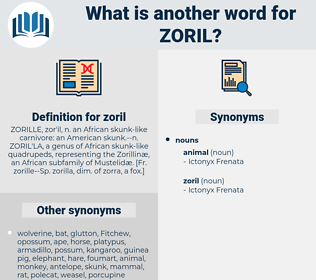 zoril, synonym zoril, another word for zoril, words like zoril, thesaurus zoril