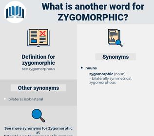 zygomorphic, synonym zygomorphic, another word for zygomorphic, words like zygomorphic, thesaurus zygomorphic
