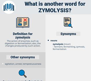 zymolysis, synonym zymolysis, another word for zymolysis, words like zymolysis, thesaurus zymolysis